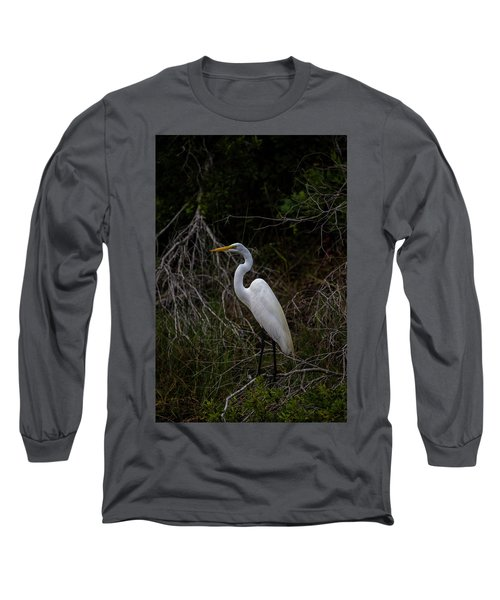 Snowy Egret On A Hot Summer Day Long Sleeve T-Shirt