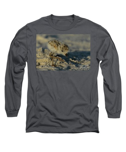 Snowy Plover On The Hunt Long Sleeve T-Shirt
