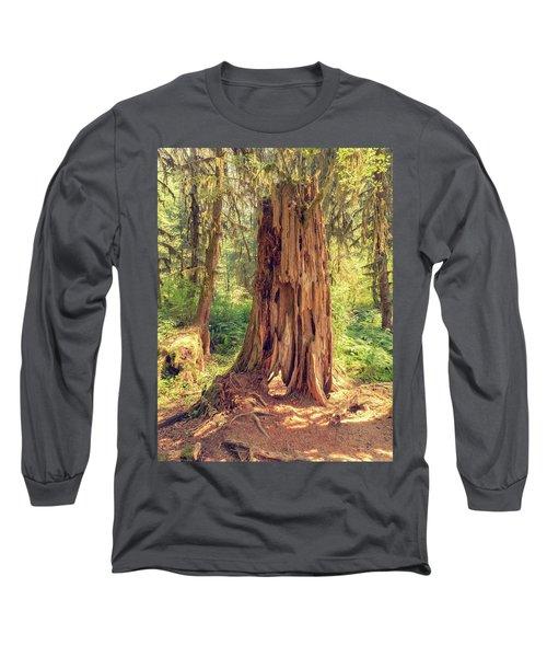 Stump In The Rainforest Long Sleeve T-Shirt