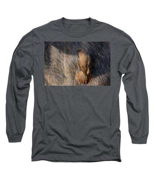 Sub-adult Yellow-billed Oxpecker On Cape Buffalo Long Sleeve T-Shirt