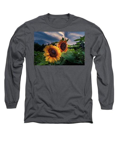 Sunflowers In Evening Long Sleeve T-Shirt