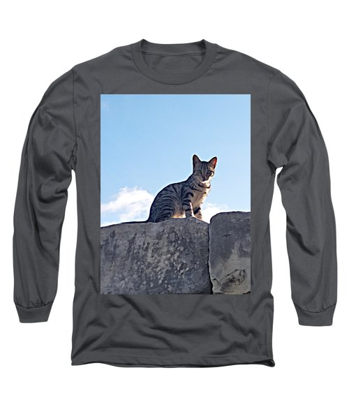 The Cat Long Sleeve T-Shirt