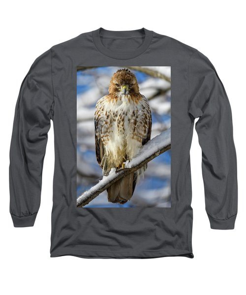 The Look, Red Tailed Hawk 1 Long Sleeve T-Shirt