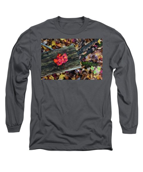 The Reason They Call It Fall Long Sleeve T-Shirt