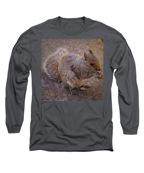 The Squirrel - Cornwall Long Sleeve T-Shirt