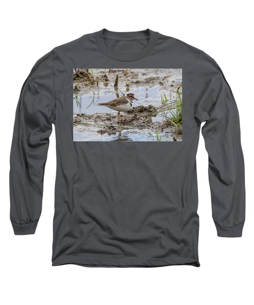 Three-banded Plover Long Sleeve T-Shirt