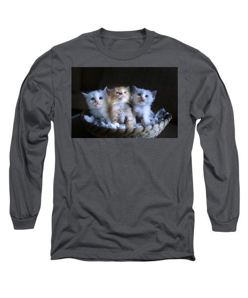 Three Little Kitties Long Sleeve T-Shirt