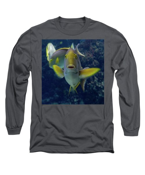 Long Sleeve T-Shirt featuring the photograph Tropical Fish Poses. by Anjo Ten Kate