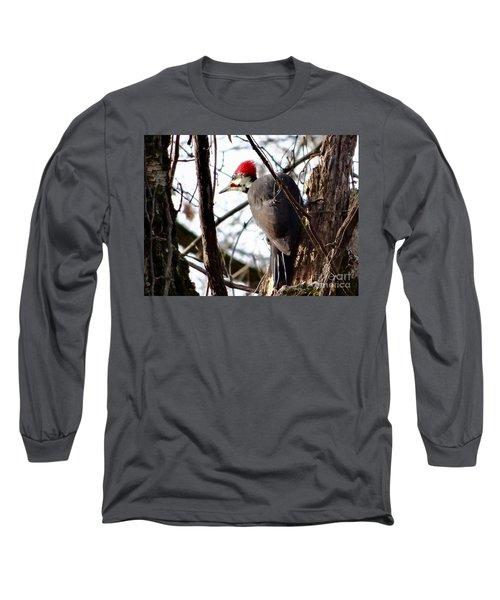 Warypileated Long Sleeve T-Shirt