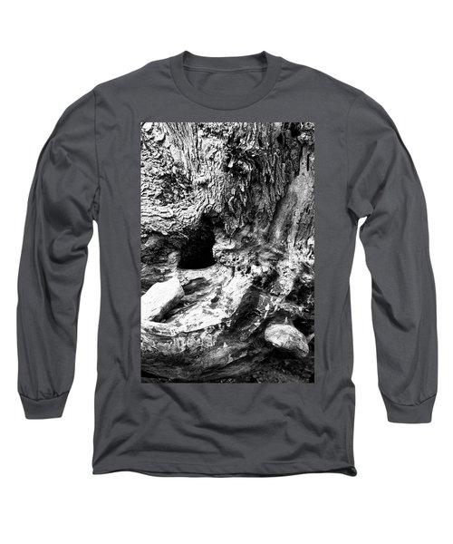 Weathered Stump Long Sleeve T-Shirt