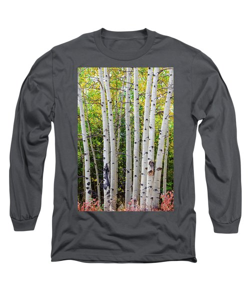 Long Sleeve T-Shirt featuring the photograph White Bark Golden Forest by James BO Insogna