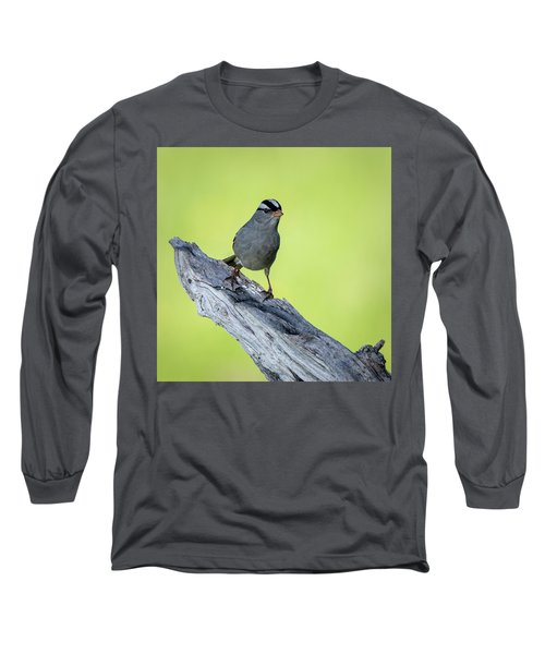 White Crowned Sparrow 1 Long Sleeve T-Shirt