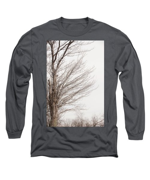 Winter Hoarfrost Long Sleeve T-Shirt