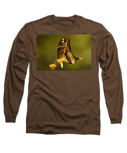 Momentary Reflection Long Sleeve T-Shirt