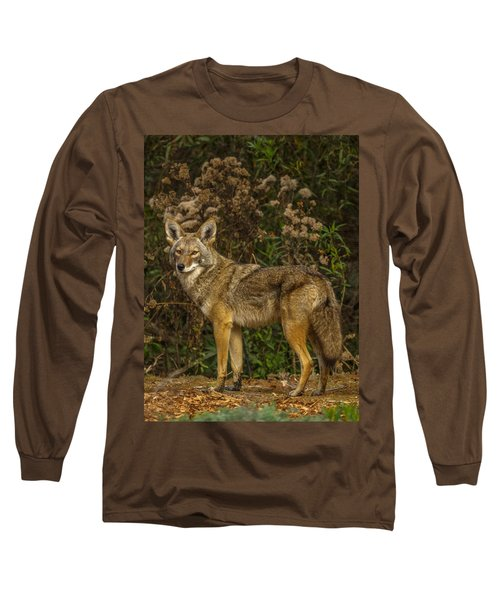 The Coyote Long Sleeve T-Shirt