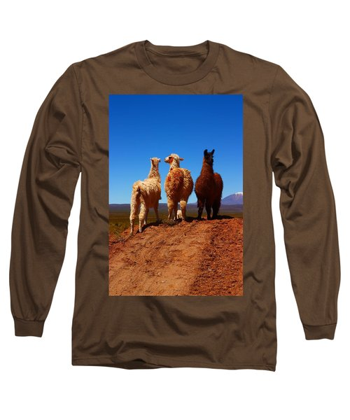 3 Amigos Long Sleeve T-Shirt by FireFlux Studios