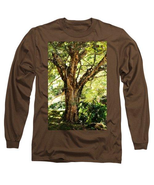 Kingdom Of The Trees. Peradeniya Botanical Garden. Sri Lanka Long Sleeve T-Shirt
