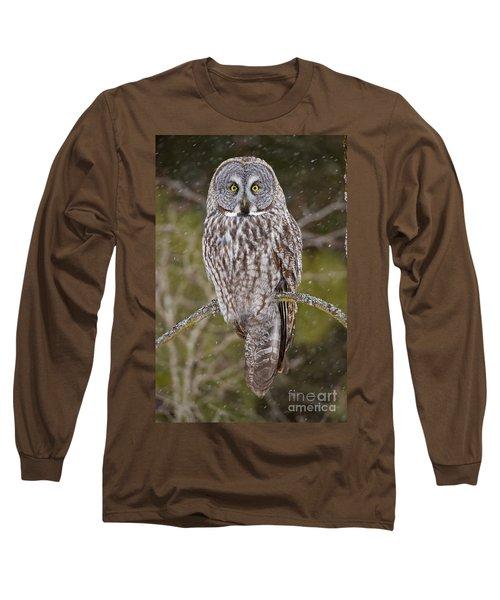 Great Gray Owl Long Sleeve T-Shirt