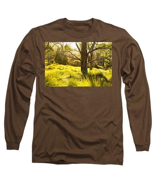A Bare Tree Long Sleeve T-Shirt