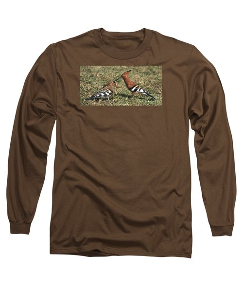 Long Sleeve T-Shirt featuring the photograph African Hoopoe Feeding Young by Liz Leyden