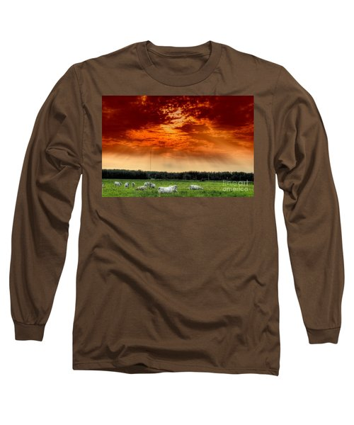 Long Sleeve T-Shirt featuring the photograph Alberta Canada Cattle Herd Hdr Sky Clouds Forest by Paul Fearn