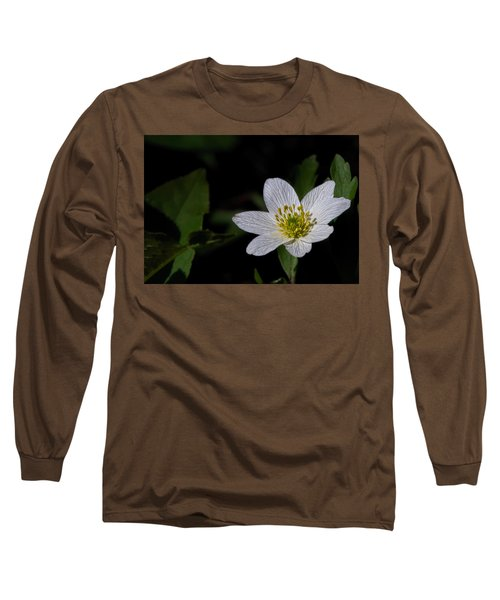 Anemone Nemorosa  By Leif Sohlman Long Sleeve T-Shirt by Leif Sohlman