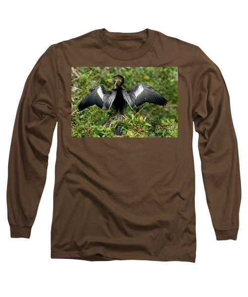 Anhinga Sunning Long Sleeve T-Shirt
