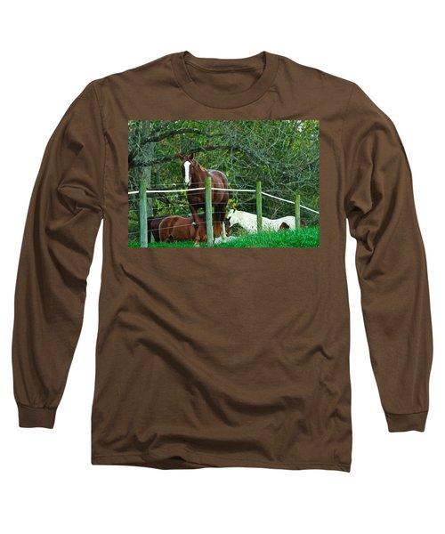Apple Dreams Long Sleeve T-Shirt