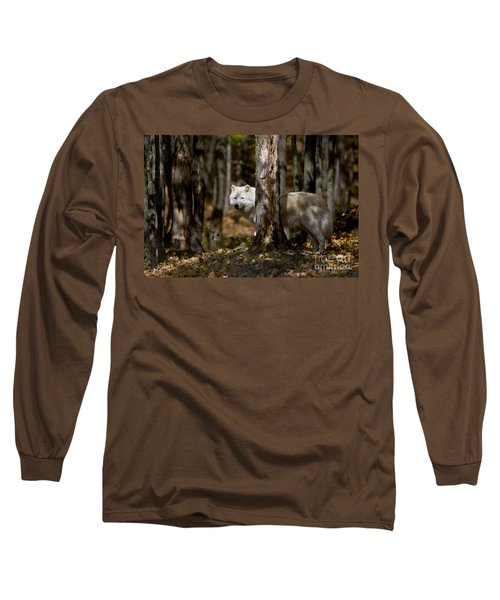Long Sleeve T-Shirt featuring the photograph Arctic Wolf In Forest by Wolves Only