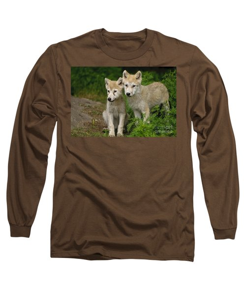 Arctic Wolf Puppies Long Sleeve T-Shirt