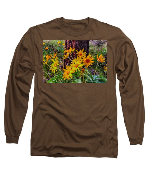 Long Sleeve T-Shirt featuring the painting Arrowleaf Balsamroot by Omaste Witkowski