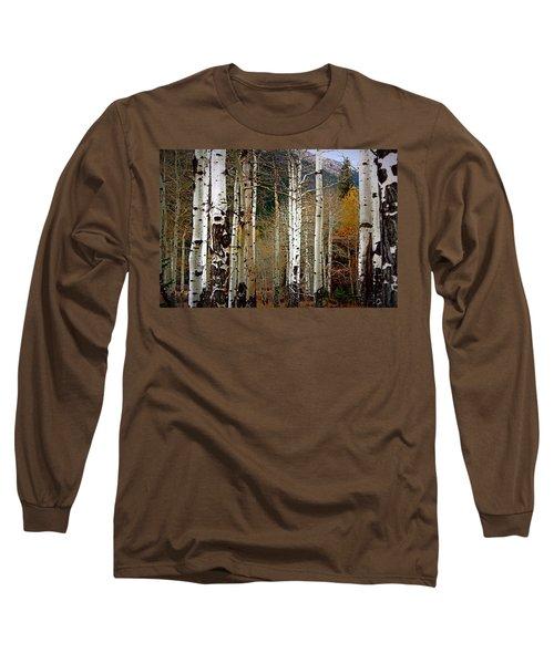 Aspen In The Rockies Long Sleeve T-Shirt