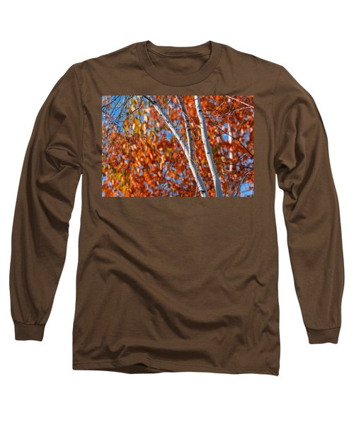 Long Sleeve T-Shirt featuring the photograph Aspen by Sebastian Musial