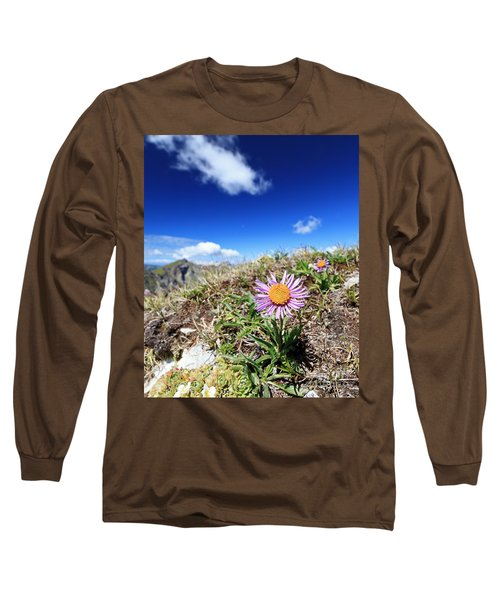 Aster Alpinus Long Sleeve T-Shirt