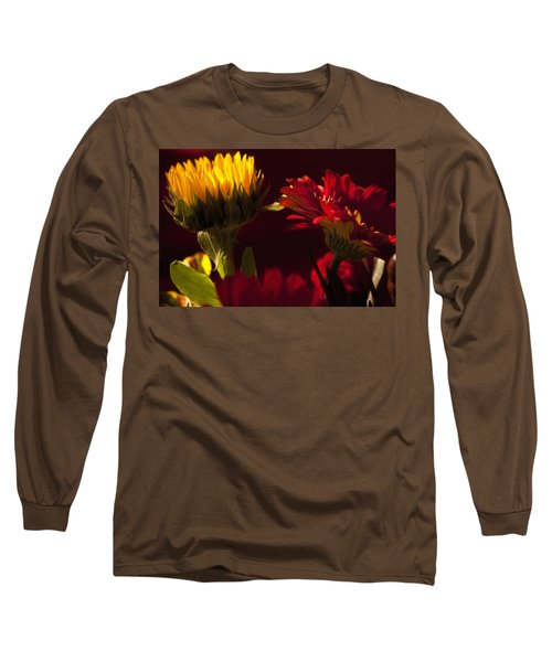 Long Sleeve T-Shirt featuring the photograph Asters In The Light by Andrew Soundarajan