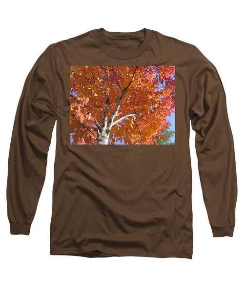 Autumn Aspen Long Sleeve T-Shirt
