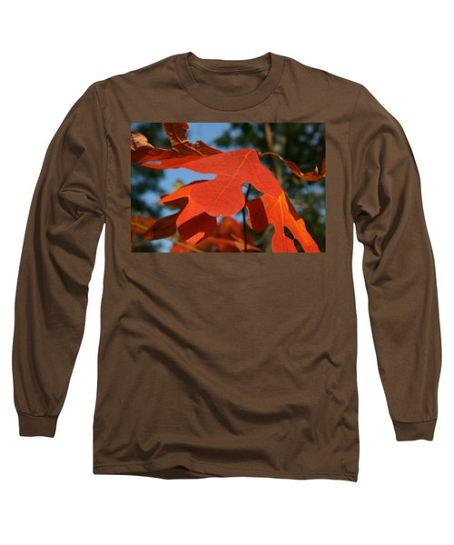 Autumn Attention Long Sleeve T-Shirt by Neal Eslinger