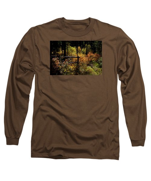 Long Sleeve T-Shirt featuring the photograph Autumn Colors 3 by Newel Hunter