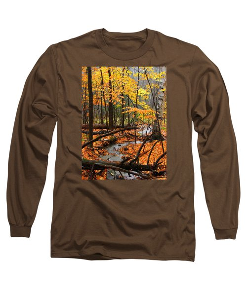 Long Sleeve T-Shirt featuring the photograph Autumn Creek In The Rain by Rodney Lee Williams