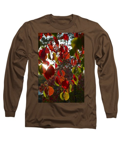 Autumn Dogwood In Evening Light Long Sleeve T-Shirt