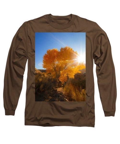 Autumn Golden Birch Tree In The Sun Fine Art Photograph Print Long Sleeve T-Shirt by Jerry Cowart