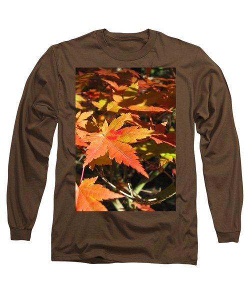Autumn Leaves 9 - Autumn Leaves Macro Long Sleeve T-Shirt