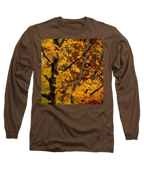 Autumn Moods 21 Long Sleeve T-Shirt