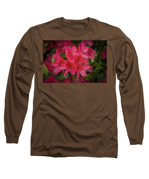 Azaleas 1 Long Sleeve T-Shirt
