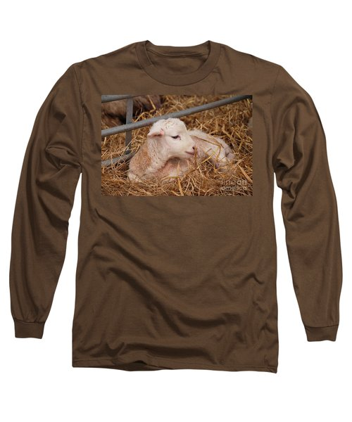 Baby Lamb Long Sleeve T-Shirt