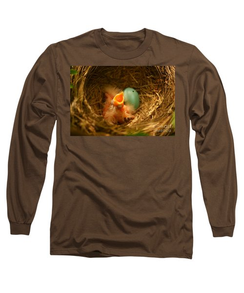 Baby Robins1 Long Sleeve T-Shirt by Loni Collins
