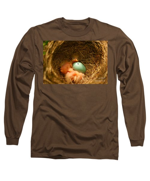 Baby Robins2 Long Sleeve T-Shirt by Loni Collins