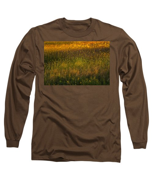 Long Sleeve T-Shirt featuring the photograph Backlit Meadow Grasses by Marty Saccone