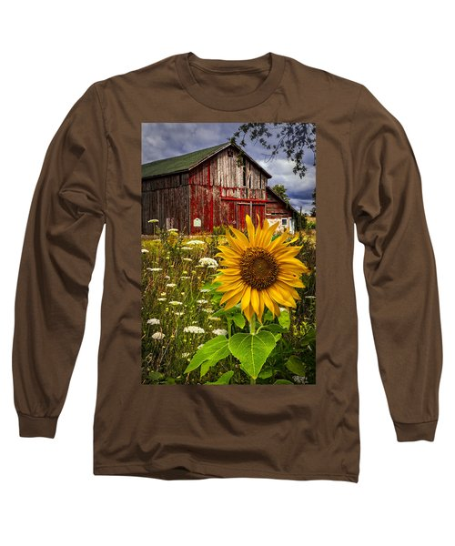 Barn Meadow Flowers Long Sleeve T-Shirt