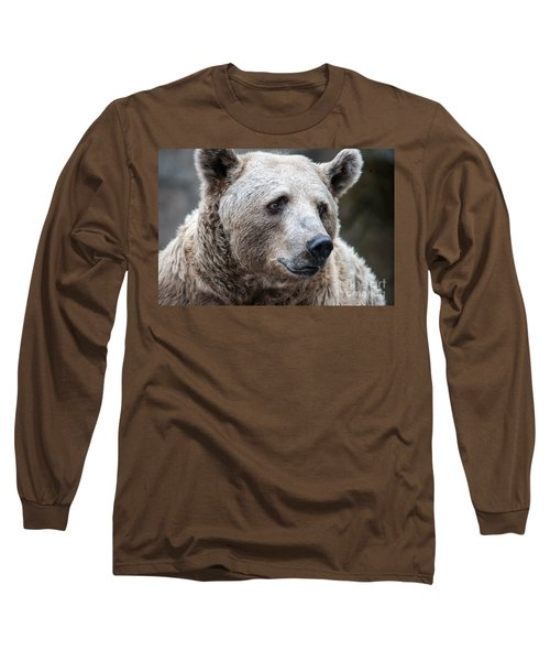 Bear Necessities Long Sleeve T-Shirt by Ray Warren